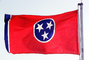 Tennessee State Flag, Fifty State Flags, GFLV02P10_04