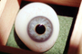 Eyeball, iris, pupil, glass eye, Sclera, HAEV01P02_10