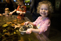 Girl playing with Sea Life, touch tank, hands-on, aquarium, sealife, starfish, hands-on exhibit, touch, KEPD01_019
