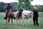 Horses, soldiers, infantry, Civil War