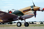 Curtiss P-40 Warhawk, MYFV05P14_03