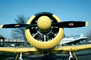 T-6G Texan, radial engine, propellers, spinner, head-on, MYFV08P09_18