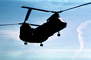 Operation Kernel Blitz, Boeing CH-46 Sea Knight, urban warfare training
