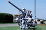 Anti Aircraft Gun, anti-aircraft, MYNV15P05_06