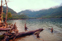 Lake, Fallen Trees, Forest, Mountains, water, NBAV01P05_03.1271