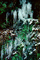 Ice, cold, snow, NMTV01P01_11