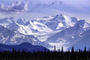 Glacier, Mountains, forest, NNAV03P10_08