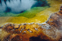 Extremophile, layers of color, Geyser, Geothermal Feature, activity, NNYV04P13_01.0940