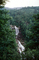 Forest, Woodlands, Trees, waterfall, river, deciduous, NORV01P01_12