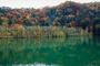 Reflecting Lake, Woodland, Forest, Trees, Hill, autumn, water, deciduous, NORV01P03_07.1260