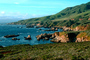 Kelp, Pacific Ocean, rocks, rugged coast, coastline