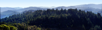 Hills Mountains, Forest, Trees, Coastal Sonoma County, California, NPND06_093