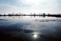 Lake, Bare Trees, Water, Reflection, calm, stillness, Sun Glint, NPNV09P06_11