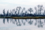 Lake, Bare Trees, Water, Reflection, calm, stillness, NPNV09P07_11
