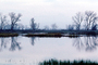 Lake, Bare Trees, Water, Reflection, calm, stillness, NPNV09P07_12