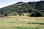 south of Petaluma, Sonoma County, Hills, Hillside, NPNV11P11_06