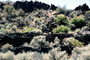 Fleener Chimneys, Lava Flows, NPNV13P10_15