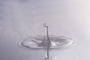 Water Drop, Concentric Rings, Droplet, Wet, Liquid Drip, Ripples, wave propagation, Wavelets, NWEV12P10_11