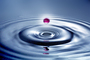 Water Drop, Concentric Rings, Droplet, Wet, Liquid Drip, Ripples, wave propagation, Wavelets, NWEV12P11_02B
