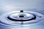Water Drop, Concentric Rings, Droplet, Wet, Liquid Drip, Ripples, wave propagation, Wavelets, NWEV12P11_13