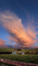 Mamatus Clouds, Sunset, Sunclipse, Two-Rock, Sonoma County, NWSD03_094