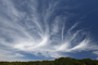 Cirrus Clouds, Bodega, Sonoma County, California, NWSD03_115