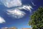 Cirrus Clouds, daytime, daylight, whispy, wispy, wisps, whisp, NWSV20P05_14.0494