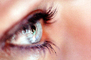 Eyeball, Iris, Lens, Pupil, Eyelash, Cornea, Sclera, Female, Woman