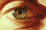 Eyeball, Iris, Lens, Pupil, Eyelash, Cornea, Sclera, Man, Male