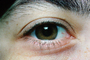 Eyes, Eyelash, skin, Eyeball, Iris, Lens, Pupil, Cornea, Sclera, Eyebrow, Female, Woman, girl