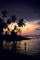 Hawaii, Palm Trees, Sunset, PAFV06P13_18