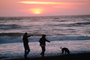 waves, beach, dog, people silhouette, People walking, sand, Pacific Ocean, sunset