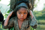 Girl Carrying Firewood, Desertification, wood bundle, twigs, Child-Labor, PDCV01P06_01