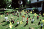 frontyard full of figurines, elfs, cats, mother goose, front yard, PDEV01P04_14