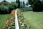 Divided Garden, Flowers, Backyards, Picket Fence, lawn