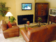 Flat Screen TV, Fireplace, Sofa, Coffee Table, Plants, Rug, PDFD01_009