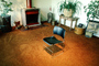 Chair, fireplace, carpet, Furniture, potted plants, 1979, 1970's
