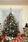 tree, presents, Decorations, Ornaments, Christmas Tree decorated, PHCV02P09_18