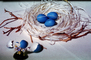 Blue eggs, paper nest, jewelry, twigs, PHEV01P03_12