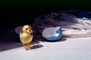 tweet, tweeting, Golden Bird, Blue egg, paper nest, PHEV01P04_02
