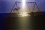 Swing Set, Beach, Pacific Ocean, Pacific Palisades, 1970's, PLGPCD0651_018B