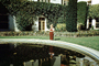 Boy, mansion, backyard, pond, ivy, bushes, garden, 1950's