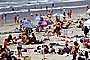 Del Mar, Crowded Beach, Umbrellas, Parasol, Sand, Shoreline, RVLV05P02_03
