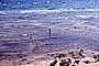 Water, small waves, Sand, Shoreline, Kings Beach, north Lake Tahoe, RVLV05P08_07