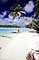 beach, sand sun, ocean, water, palm trees, Aitutaki, Cook Islands, RVLV06P14_02