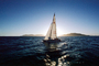Sailing in the San Francisco Bay, Angel Island, SALV02P12_15B
