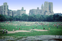 Central Park, Manhattan, summer, summertime, SBBV01P01_13