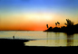 Sunset over the Water, Lagoon, Pacific Ocean, Palm Trees, SFIV01P10_02B