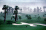 Sand Trap, dust storm, palm trees, SGFV01P07_14