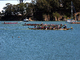 Dragon Boat Races, Treasure Island, San Francisco, Longboat, SRKD01_006